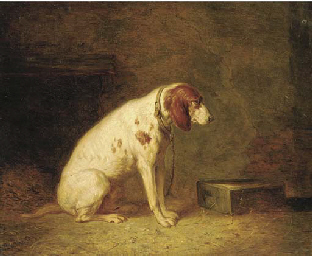 A hound in a kennel