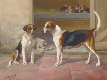 Bashful and Freedom, two hound