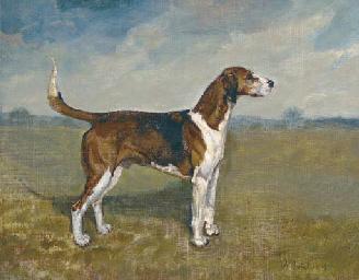 Otto, a hound in a landscape