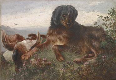 A gundog with a grouse