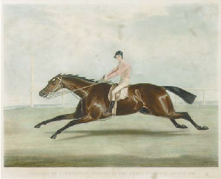 Conolly on Coronation, winner