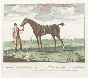 Camillus; 'a Horse belonging t