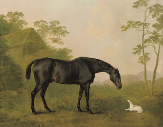 A black hunter and a dog in a