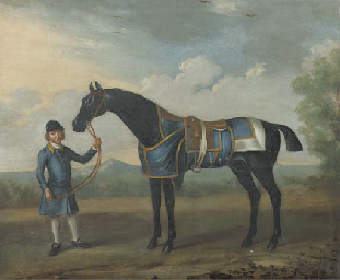 A black Bay race horse and a g