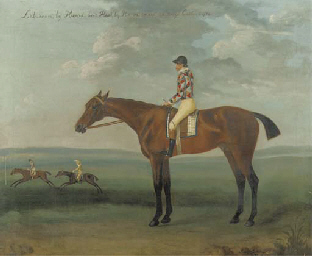 Laburnum, with jockey up