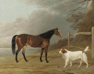 A Bay hunter with a dog by a f