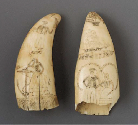 TWO SCRIMSHAW WHALE TEETH