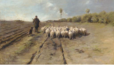 Leading home the flock