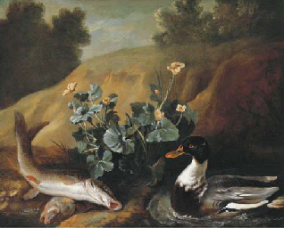 A duck with two barbels at the