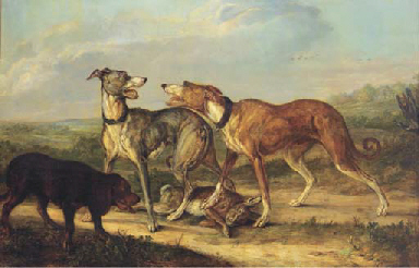 Hounds fighting over a hare in