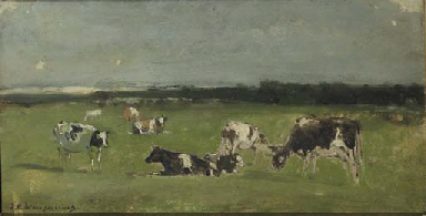 In de weide: cows in a polder