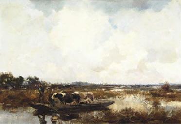 Cattle in a polder landscape