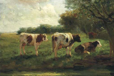 Cows in a sunlit polder landsc