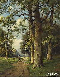 Seasons: a forest path in summ