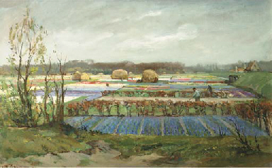 Bulbfields near Bentveld