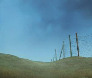 Dijk bij Electra - Landscape w