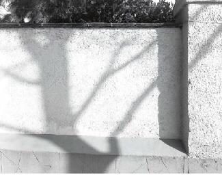 Untitled, 1974-1975