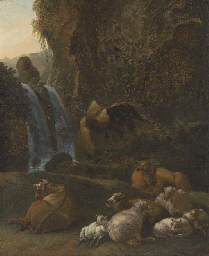 A rocky river landscape with s