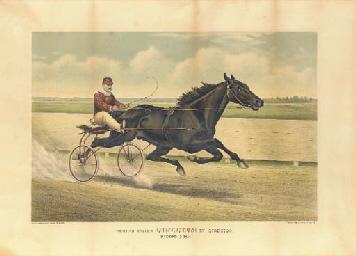 The Champion Trotting Stallion
