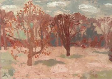Trees at Arniston