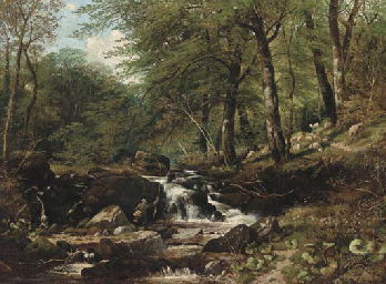 An angler in a wooded landscap