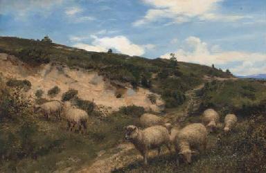 A moorland pasture