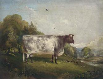 Princess, a prize bull in a la