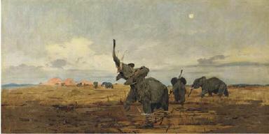 Morning: elephants on the sava