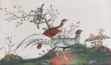 Seven Chinese paintings on ric