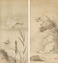 Small birds and herons in a lo