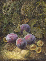 Still life of plums and gooseb