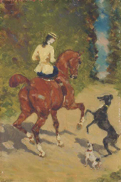 Elégante sur un cheval en comp