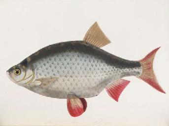 BOWDICH, Sarah (1791-1856). Th