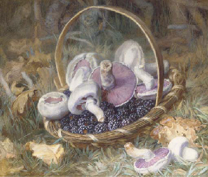 A basket of wild mushrooms and