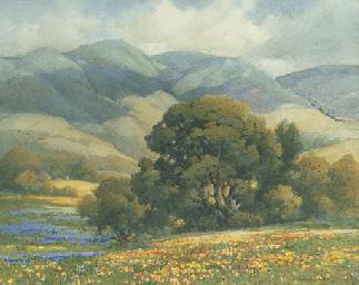 Flower Field, Carmel Valley