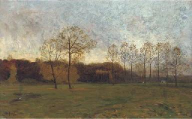 Dusk in the meadow