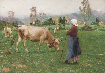 Grazing the cattle