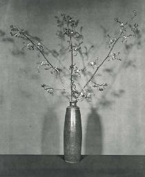 Flower (Tiger Orchids), 1983