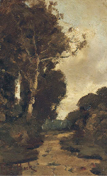 Boschrand: view in a forest