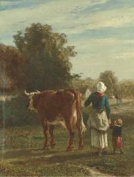 Retour de la vache