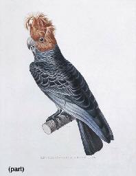 JEAN LOUIS DENIS COUTANT (1776