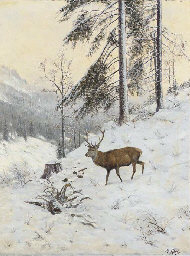 A stag in a winter forest