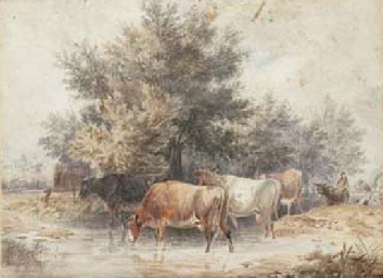 Cattle crossing a ford
