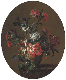 Carnations, parrot tulips, pop