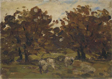 Sheep under trees