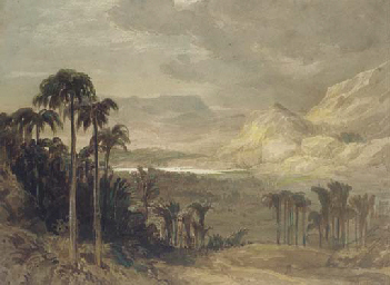 A view in Ceylon