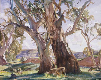 The Two Red Gums