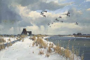 Widgeon over St Benet's, Ludha