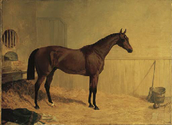 Cotherstone, a bay racehorse i