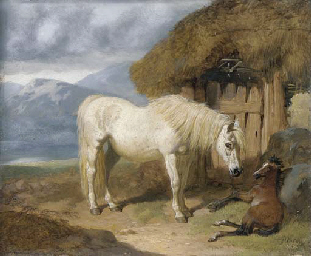 A mare and foal by a bothy